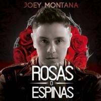 Canción 'Rosas O Espinas' interpretada por Joey Montana
