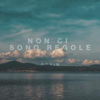 Canción 'Non Ci Sono Regole' interpretada por Grein