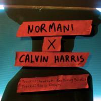 'Slow Down' de Calvin Harris
