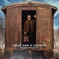 Canción '¿Qué Vas A Hacer?' interpretada por Ricardo Montaner