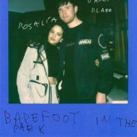 BAREFOOT  IN THE PARK letra JAMES BLAKE