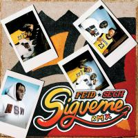 Canción 'Sígueme Remix' interpretada por Feid