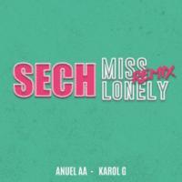 Canción 'Miss Lonely Remix 2' interpretada por Sech