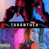 Tarántula de Ariann Music
