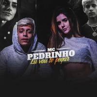 Canción 'Eu Vou Te Pegar' interpretada por MC Pedrinho