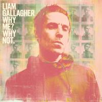 'The River (Why Me? Why Not)' de Liam Gallagher