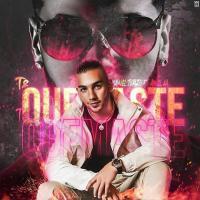 Canción 'Te Quemaste' interpretada por Manuel Turizo