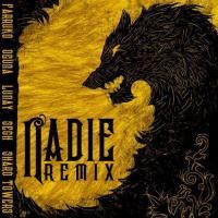 Nadie Remix - Farruko