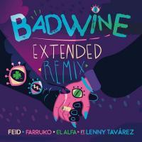 BADWINE EXTENDED REMIX letra FEID