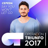 Say You Won't Let Go de Cepeda