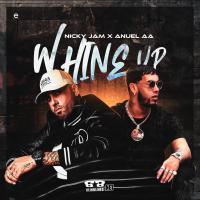 Whine Up - Nicky Jam