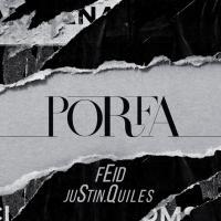 Letra Porfa Feid