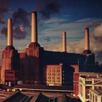 Dogs - Pink Floyd