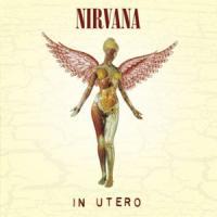 Canción 'Gallons Of Rubbing Alcohol Flow Through The Strip' interpretada por Nirvana