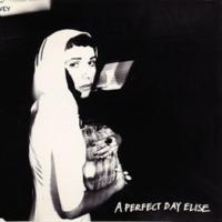 A PERFECT DAY, ELISE letra PJ HARVEY