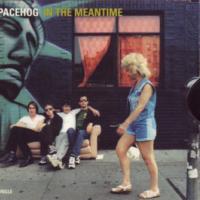 Canción 'In The Meantime' interpretada por Spacehog