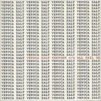 All Hail Me - Veruca Salt