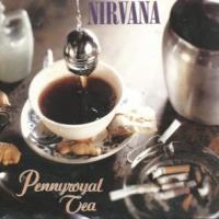 Pennyroyal Tea de Nirvana