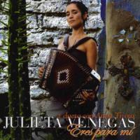 Eres para Mí - Julieta Venegas