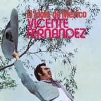 No vas a creer - Vicente Fernández