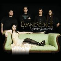 Weight Of The World de Evanescence