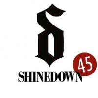 Canción '45' interpretada por Shinedown