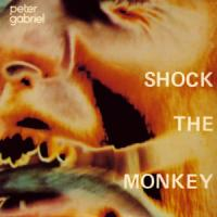 Shock The Monkey de Peter Gabriel