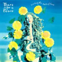 Canción 'Sowing The Seeds Of Love' interpretada por Tears For Fears