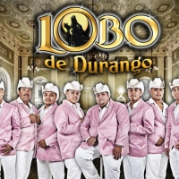 Que Lástima - Lobo de Durango