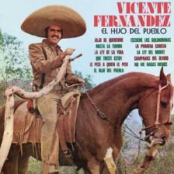 Que Triste Estoy - Vicente Fernández