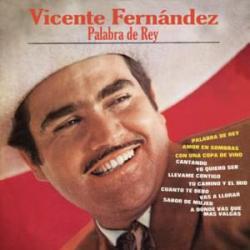 Amor En Sombras - Vicente Fernández