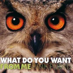 What Do You Want From Me - Pink Floyd