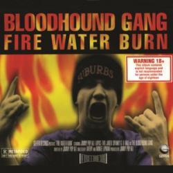 Imagen de la canción 'Fire Water Burn'