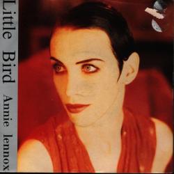 Imagen de la canción 'Little Bird'