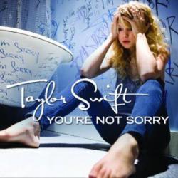 Imagen de la canción 'You're Not Sorry'