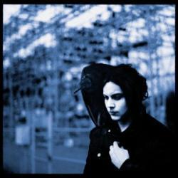 Imagen de la canción 'I'm Shakin'