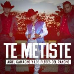 Imagen de la canción 'Te Metiste'