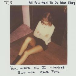 Imagen de la canción 'All You Had To Do Was Stay'