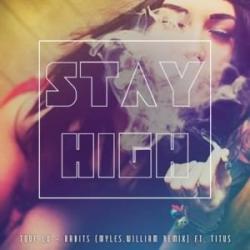 Stay High (Habits Remix) (ft. Hippie Sabotage)