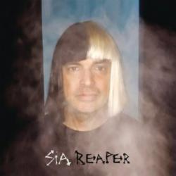 Imagen de la canción 'Reaper'