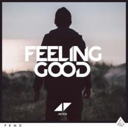 Imagen de la canción 'Feeling Good'
