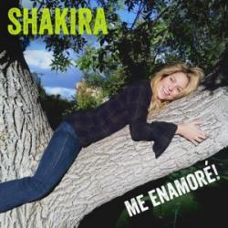 Imagen de la canción 'Me Enamoré'