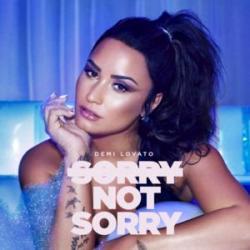 Imagen de la canción 'Sorry Not Sorry'