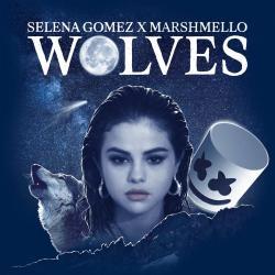 Imagen de la canción 'Wolves'