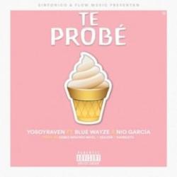 Te Probé (ft. Yo Soy Raven, Blue Wayze)