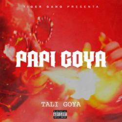 Imagen de la canción 'Papi Goya'
