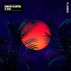 Flames David Guetta Remix - David Guetta
