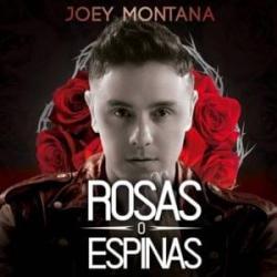 Imagen de la canción 'Rosas O Espinas'