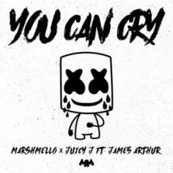 Imagen de la canción 'You Can Cry (song for Paris)'