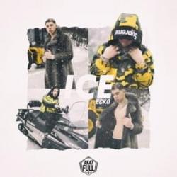 Imagen de la canción 'Ice'